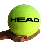 Bola de Tênis Head...