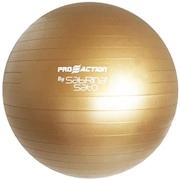 Gym Ball Proaction...