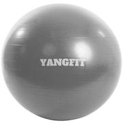 3e42ae1b4e723 Bola de Pilates Suíça Yang Fit com Bomba de Encher - 65cm