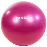 Bola de Pilates Suíça Yang Fit com Bomba de Encher - 65cm fdfb1525dc48b