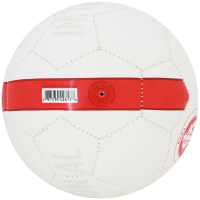 Minibola de Futebol de Campo Nike Internacional - Infantil