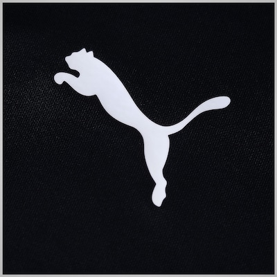 Camiseta Puma Pitch Shortsleeved - Masculina